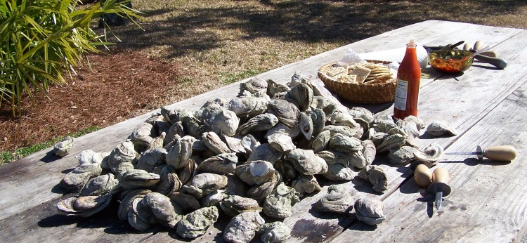 oysterroast